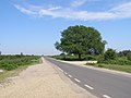 Entrance to Broomy Walk car park, New Forest - geograph.org.uk - 184398.jpg