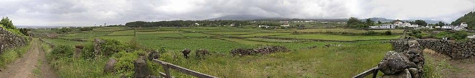 Panoramic view near São Mateus, Terceira, June 2004