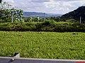 Escarpas da Serra de Santana - Rio Claro - panoramio.jpg