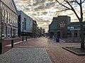 Essex Street Pedestrian Mall.jpg