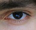 Eye 02.jpg