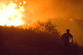 FEMA - 33367 - Burning vegetation in California.jpg