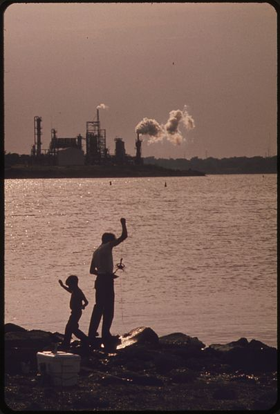 File:FISHING IN THE HOUSTON SHIP CHANNEL. IN THE BACKGROUND, SMOKE POURS FROM THE CHIMNEYS OF THE DU PONT CHEMICAL PLANT - NARA - 550902.jpg