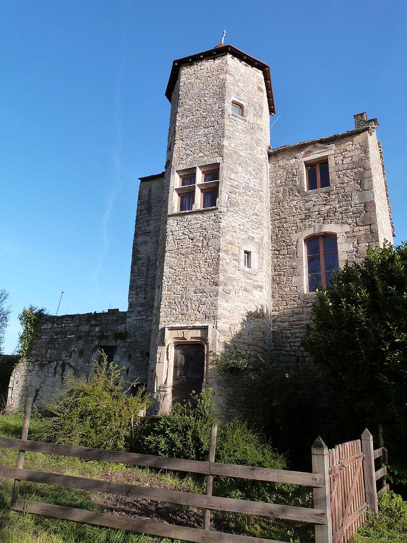 Façade avec tour ( château de Salles-Courbatiès).JPG
