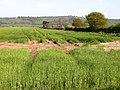 Farm and Wolds - geograph.org.uk - 454150.jpg
