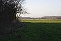 Farmland by Dunsby Wood - geograph.org.uk - 313204.jpg