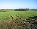 Farmland near Rock Moor House - geograph.org.uk - 327367.jpg