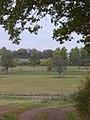 Feldweg bei Messbusch (Field Path by Messbusch) - geo.hlipp.de - 14493.jpg