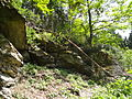 Felsen in der Dehl (Hoch-Weisel) 13.JPG
