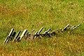 Fence (229962257).jpg