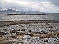 Fenit, Unnamed island - geograph.org.uk - 257055.jpg