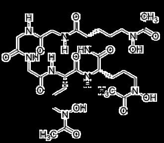 Hydroxamic acid - Image: Ferrichrome