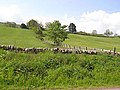 Fields near Woodcroft - geograph.org.uk - 1338761.jpg