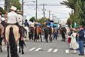 Fiestas Patrias Parade, South Park, Seattle, 2015 - 292 - the horses (21568206006).jpg