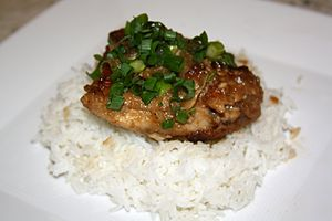 National symbols of the Philippines - Rice topped with chicken adobo. Adobo is being considered as the National Dish.