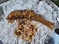 Fish Rice.jpg