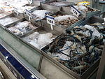 Fish food Udonthani WD1.JPG