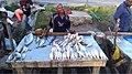 Fish to boost body immune system.jpg