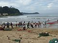 Fishermen hauling nets Sri Lanka Photo207.jpg