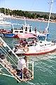 Fishermen in Gelendzhik Bay.jpg