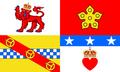 Flag of Angus.png