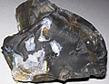 Flint (Vanport Flint, Middle Pennsylvanian; Nethers Flint Quarries, Flint Ridge, Ohio, USA) 190.jpg