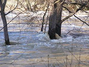 Flood in Znojmo (2006) 5