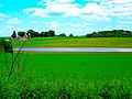 Flooded Farmland - panoramio (2).jpg
