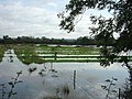 Floods near Egginton - geograph.org.uk - 955049.jpg
