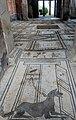 Floor drawings pompei site.jpeg