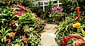 Floral Display - Butchart Gardens, Victoria, British Columbia, Canada (28751031630).jpg
