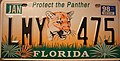 Florida 1998 Protect The Panther License Plate.jpg