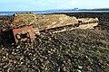 Flotsam on the shore at Barns Ness - geograph.org.uk - 1608032.jpg