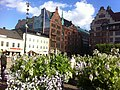 Flowers-and-buildings-at-stortorget-malmö.jpg