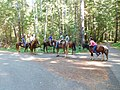 Folks riding horses near west end of Crescent Lake (29668649171).jpg