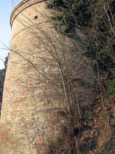 File:Fontanile Torre degli Ansaldi 1.JPG