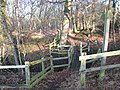Footbridge near Hill House - geograph.org.uk - 637904.jpg