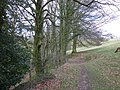 Footpath, above Hanger Farm - geograph.org.uk - 1776535.jpg