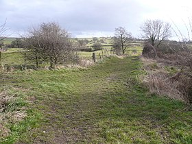 Footpath View near Carr Vale.jpg
