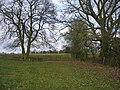 Footpath from Cladswell - geograph.org.uk - 138782.jpg