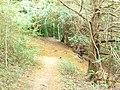 Footpath on White Hill - geograph.org.uk - 1397117.jpg