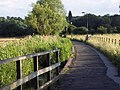 Footpath to the Old Mill, Harnham - geograph.org.uk - 478946.jpg