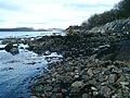 Foreshore, Loch Sween - geograph.org.uk - 127672.jpg