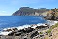 Fossil Bay Maria Island 4nitsirk 8460241226..jpg