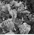 Fotothek df ps 0000040 Geschmolzene Gefäße und Produkte der Lingner-Werke.jpg
