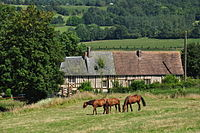 France, Calvados, Auquainville (4).JPG