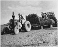 France. The Agricultural Extension Services have done much towards popularizing the use of agriculture equipment in... - NARA - 541685.tif
