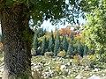 France Lozère Parc national des Cévennes Les Urfruits 11.jpg