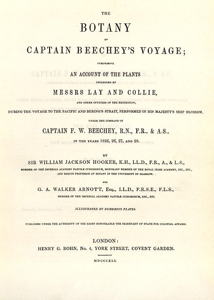 Titelblatt Botany of Beechey's Voyage to the Pacific and Behring's Straits (1841).