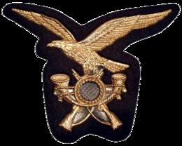 6º Reggimento alpini - Wikipedia fdf76123e4c6